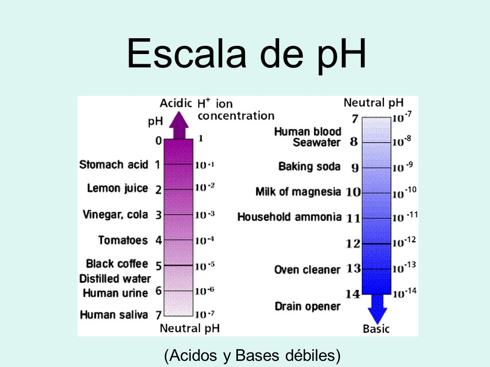 Escala de pH (Acidos y Bases débiles)