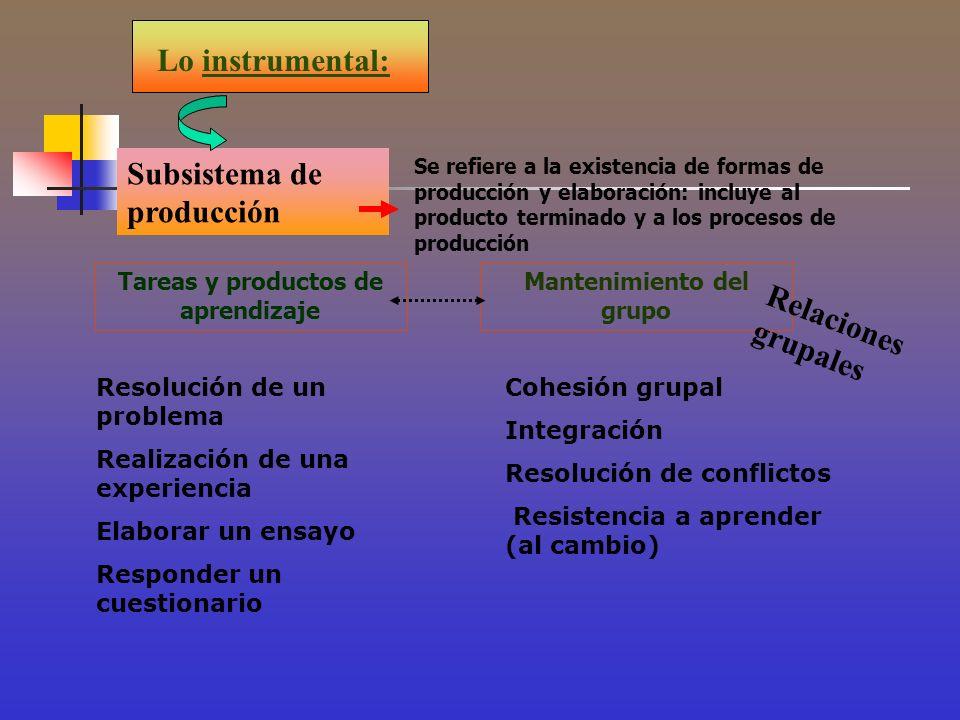 Lo instrumental: Subsistema de producción Se refiere a la existencia de formas de producción y elaboración: incluye al producto terminado y a los proc