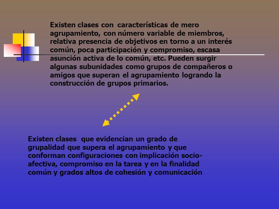 Existen clases con características de mero agrupamiento, con número variable de miembros, relativa presencia de objetivos en torno a un interés común,