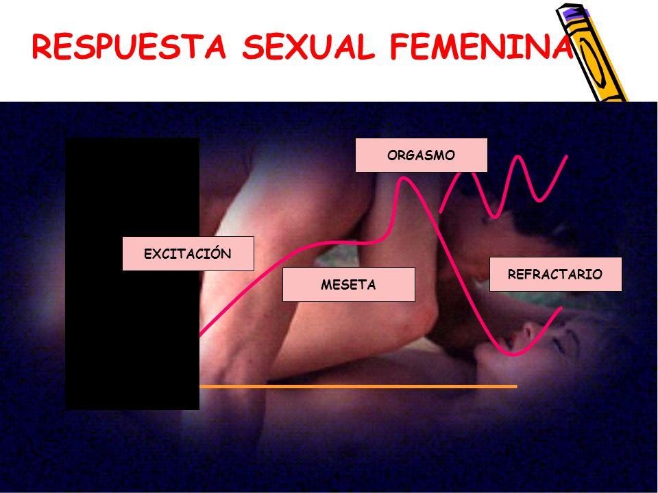 El aporte de Helen Singer Kaplan Helen Singer Kaplan consideró que para que haya una adecuada respuesta sexual se requiere una fase previa: el deseo Si este no existe, no hay excitación