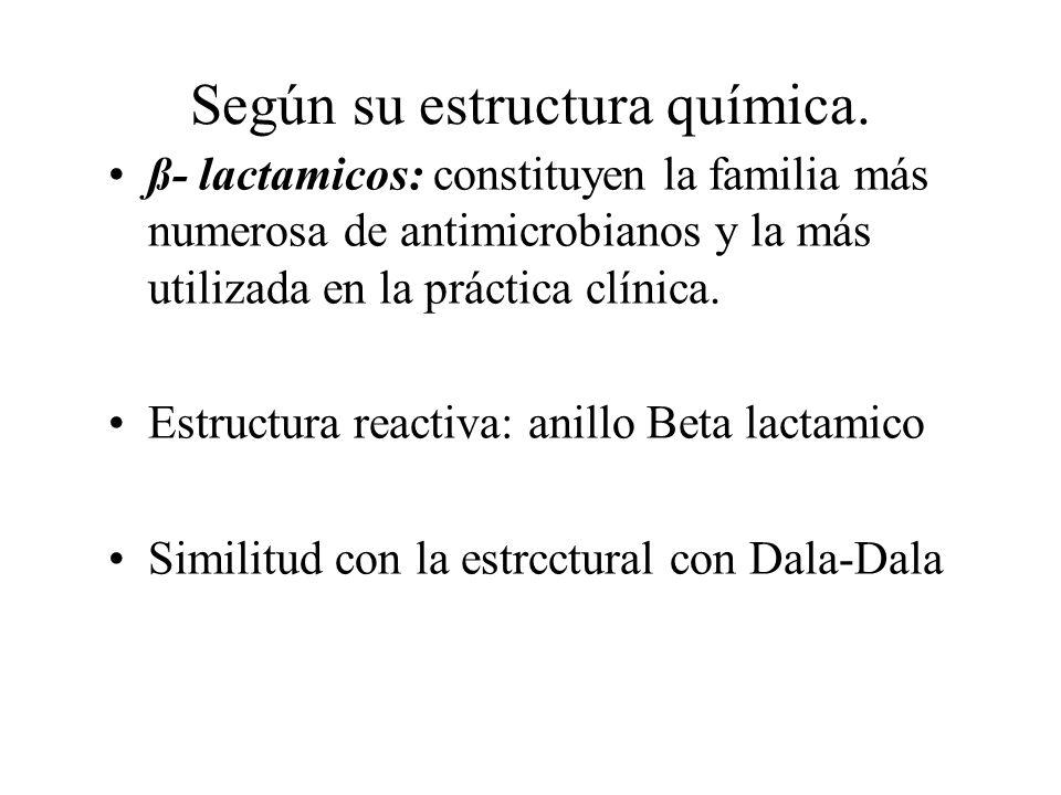 Según su estructura química. ß- lactamicos: constituyen la familia más numerosa de antimicrobianos y la más utilizada en la práctica clínica. Estructu