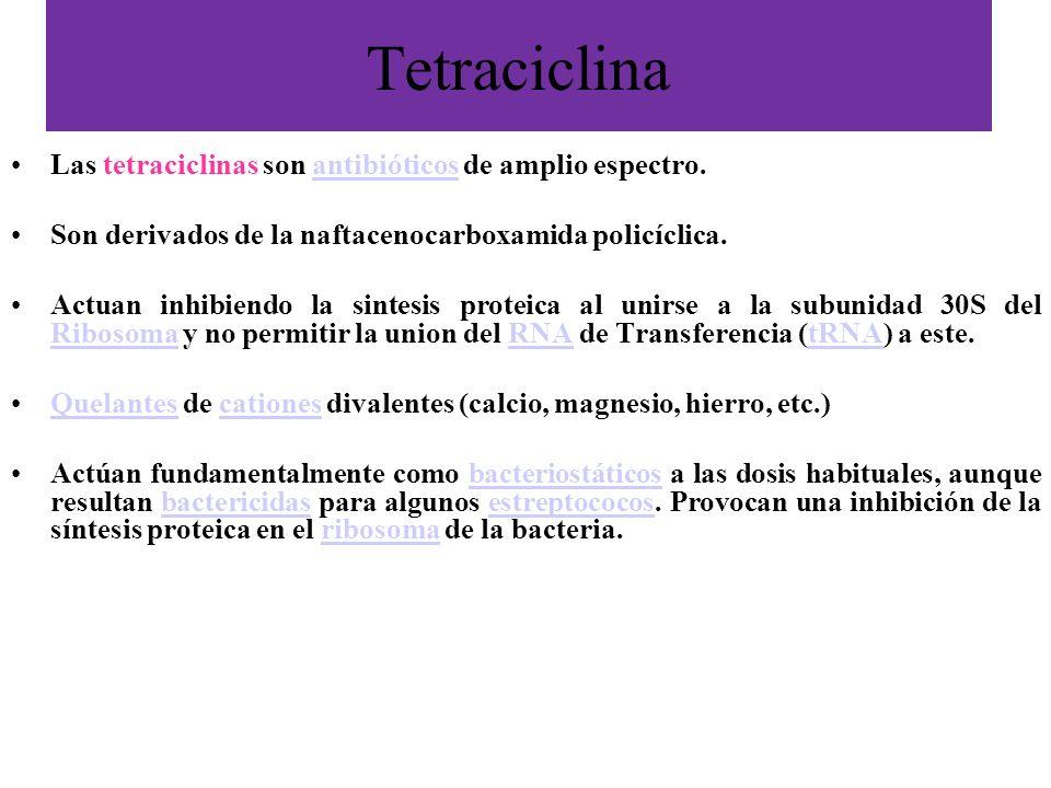 Tetraciclina Las tetraciclinas son antibióticos de amplio espectro.antibióticos Son derivados de la naftacenocarboxamida policíclica. Actuan inhibiend