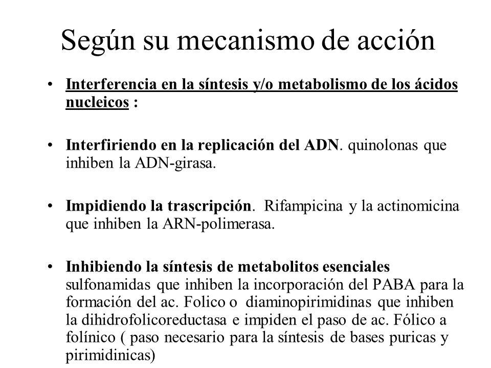Según su mecanismo de acción Interferencia en la síntesis y/o metabolismo de los ácidos nucleicos : Interfiriendo en la replicación del ADN. quinolona