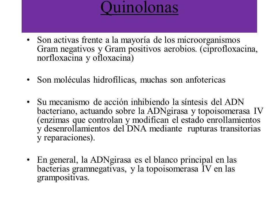Quinolonas Son activas frente a la mayoría de los microorganismos Gram negativos y Gram positivos aerobios. (ciprofloxacina, norfloxacina y ofloxacina