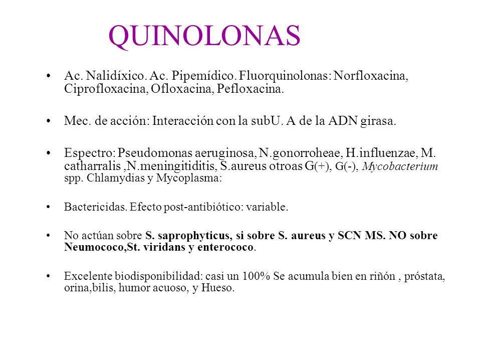 QUINOLONAS Ac. Nalidíxico. Ac. Pipemídico. Fluorquinolonas: Norfloxacina, Ciprofloxacina, Ofloxacina, Pefloxacina. Mec. de acción: Interacción con la