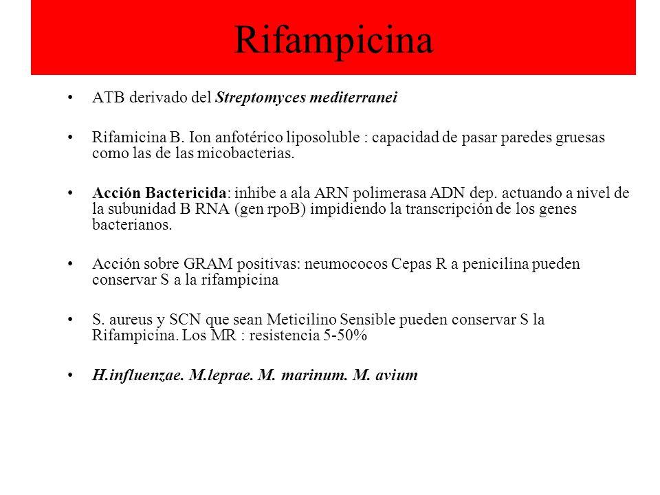 Rifampicina ATB derivado del Streptomyces mediterranei Rifamicina B. Ion anfotérico liposoluble : capacidad de pasar paredes gruesas como las de las m