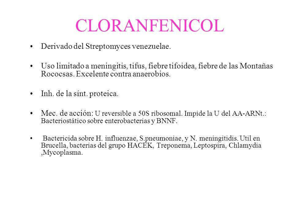 CLORANFENICOL Derivado del Streptomyces venezuelae. Uso limitado a meningitis, tifus, fiebre tifoidea, fiebre de las Montañas Rococsas. Excelente cont