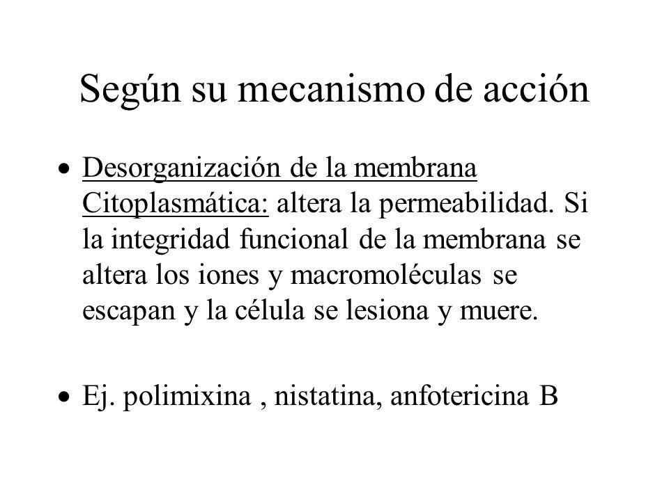 Según su mecanismo de acción Desorganización de la membrana Citoplasmática: altera la permeabilidad. Si la integridad funcional de la membrana se alte