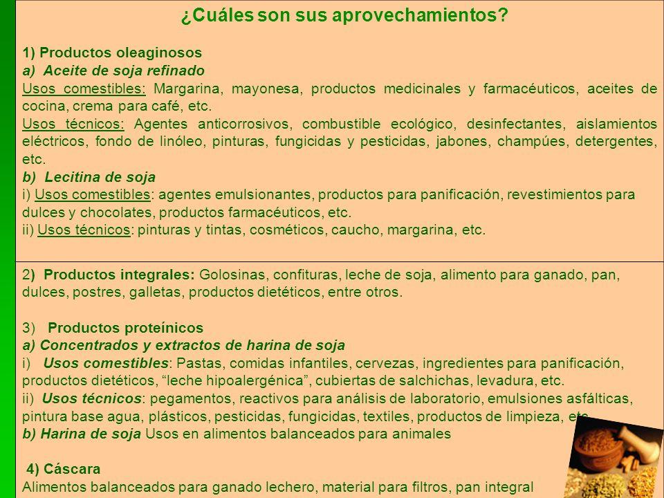 ¿Cuáles son sus aprovechamientos? 1) Productos oleaginosos a) Aceite de soja refinado Usos comestibles: Margarina, mayonesa, productos medicinales y f