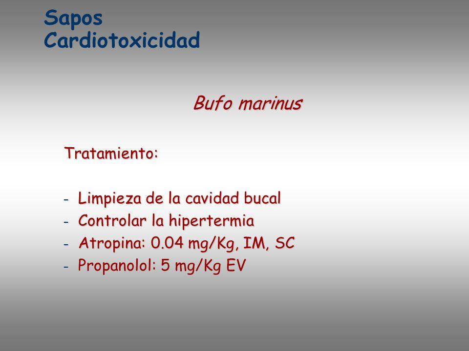 Sapos Cardiotoxicidad Bufo marinus Tratamiento: – Limpieza de la cavidad bucal – Controlar la hipertermia – Atropina: 0.04 mg/Kg, IM, SC – Propanolol: