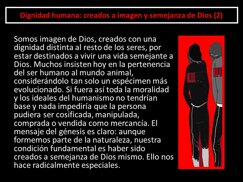 Dignidad humana: creados a imagen y semejanza de Dios (2) Somos imagen de Dios, creados con una dignidad distinta al resto de los seres, por estar des