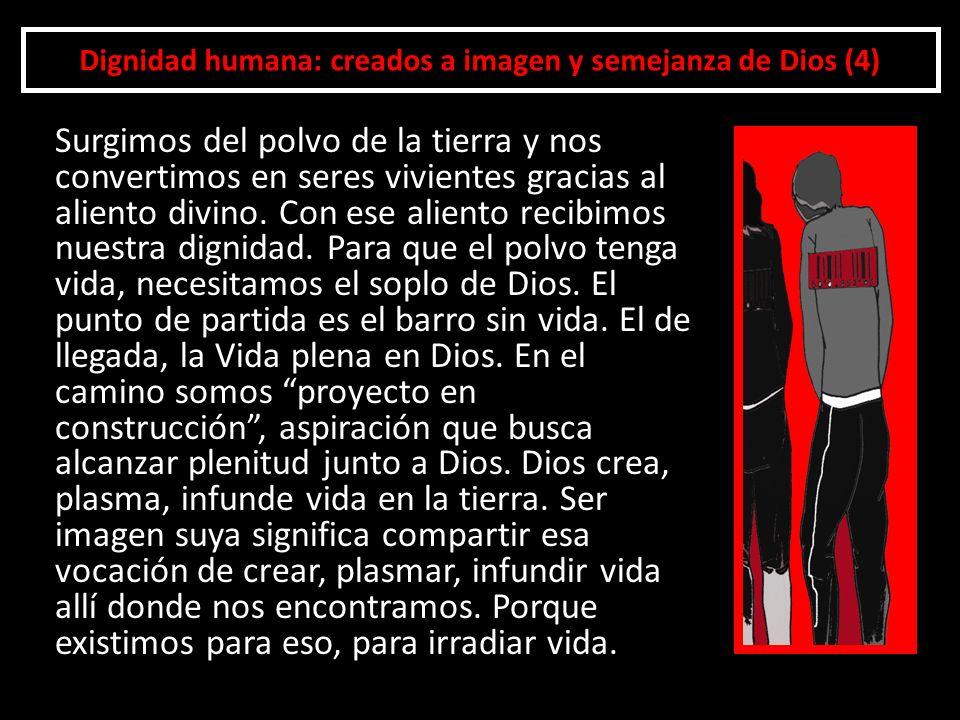 Dignidad humana: creados a imagen y semejanza de Dios (4) Surgimos del polvo de la tierra y nos convertimos en seres vivientes gracias al aliento divi