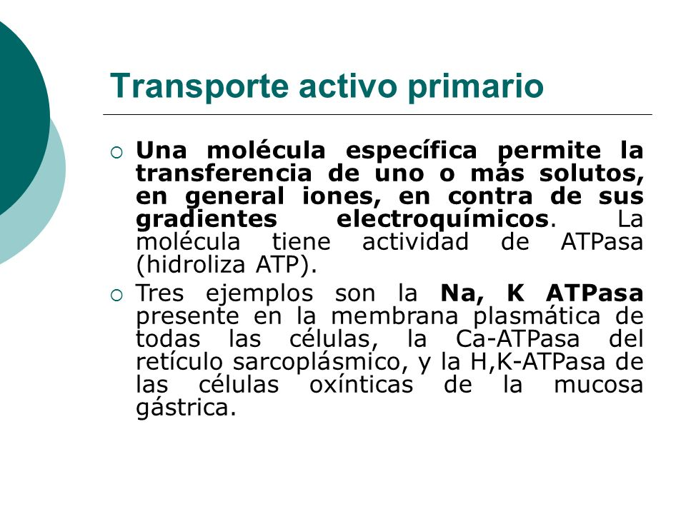 Transporte activo primario Una molécula específica permite la transferencia de uno o más solutos, en general iones, en contra de sus gradientes electr