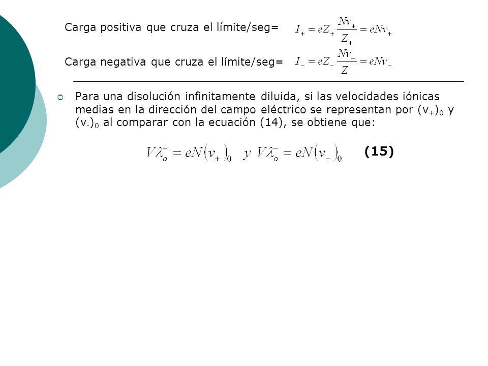 Para una disolución infinitamente diluida, si las velocidades iónicas medias en la dirección del campo eléctrico se representan por (v + ) 0 y (v - )