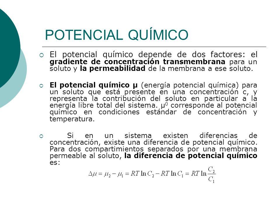 POTENCIAL QUÍMICO El potencial químico depende de dos factores: el gradiente de concentración transmembrana para un soluto y la permeabilidad de la me