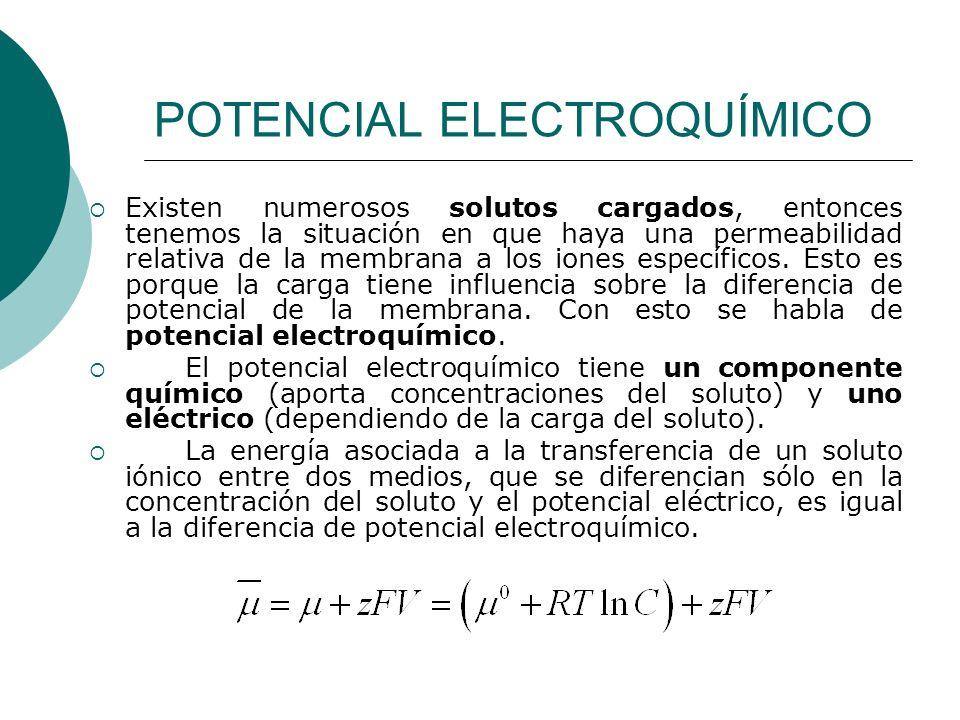 POTENCIAL ELECTROQUÍMICO Existen numerosos solutos cargados, entonces tenemos la situación en que haya una permeabilidad relativa de la membrana a los