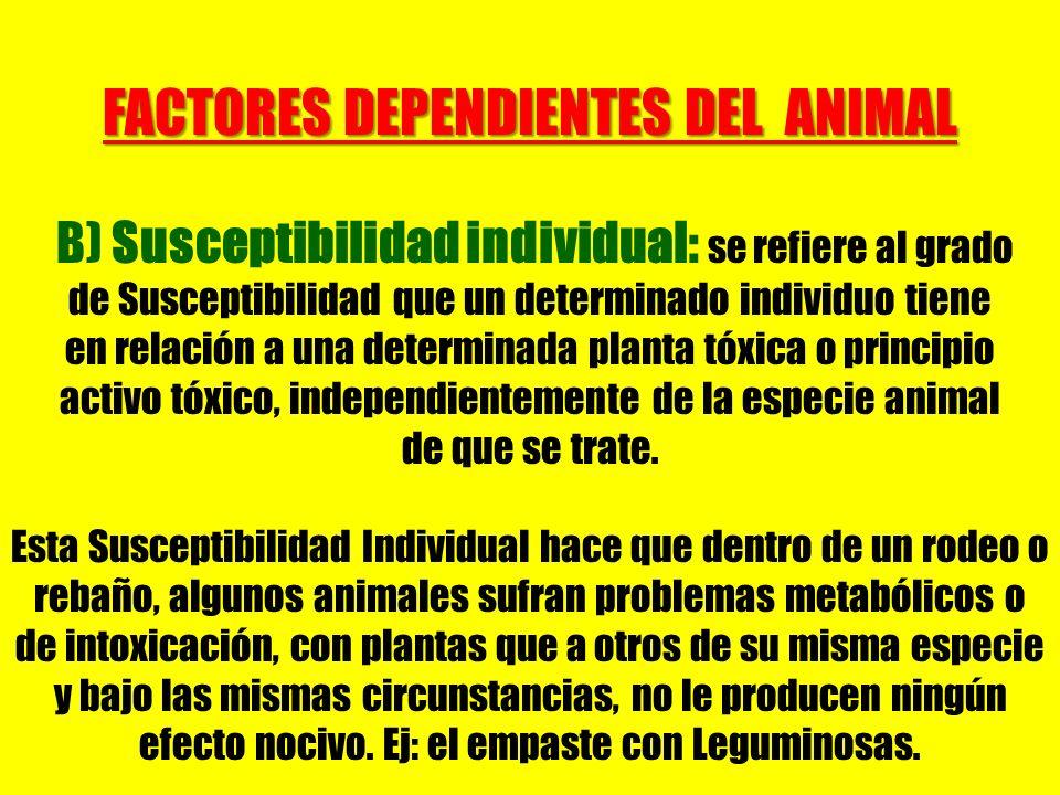FACTORES DEPENDIENTES DEL ANIMAL B) Susceptibilidad individual: se refiere al grado de Susceptibilidad que un determinado individuo tiene en relación