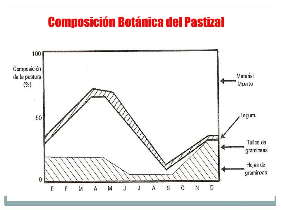 Composición Botánica del Pastizal