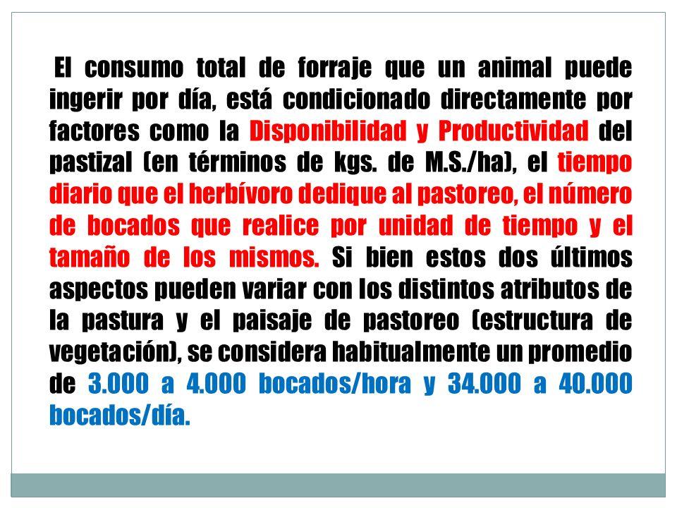 El consumo total de forraje que un animal puede ingerir por día, está condicionado directamente por factores como la Disponibilidad y Productividad de