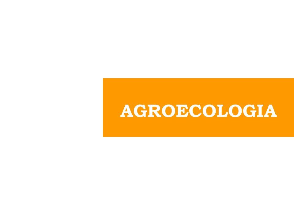 Un nuevo campo de conocimientos, un enfoque, una disciplina científica que reúne, sintetiza y aplica conocimientos de la agronomía, la ecología, la sociología, la etnobotánica, y otras ciencias afines, con una óptica holística y sistemática y un fuerte componente ético, para generar conocimientos y validar y aplicar estrategias adecuadas para diseñar, manejar y evaluar agroecosistemas sustentables AGROECOSISTEMA es un SISTEMA COMPLEJO que integra la componente agrícola tratando de IMITAR LOS ECOSISTEMAS NATURALES Va más allá de un punto de vista unidimensional de los agroecosistemas, enfatiza las interrelaciones entre sus componentes y la dinámica compleja de los procesos ecológicos (Vandermeer, 1995).