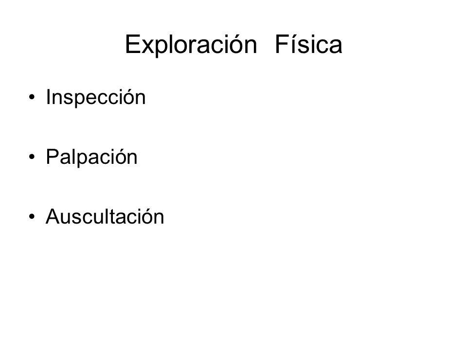 Exploración Funcional Presión esfínter esofágico inferior Medición del Ph esofágico Función secretora del estómago Biopsias Estudios para Helicobacter Pylori