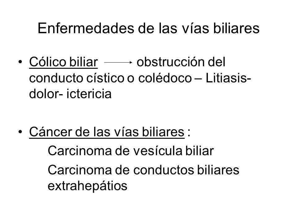 Enfermedades de las vías biliares Cólico biliarobstrucción del conducto cístico o colédoco – Litiasis- dolor- ictericia Cáncer de las vías biliares :