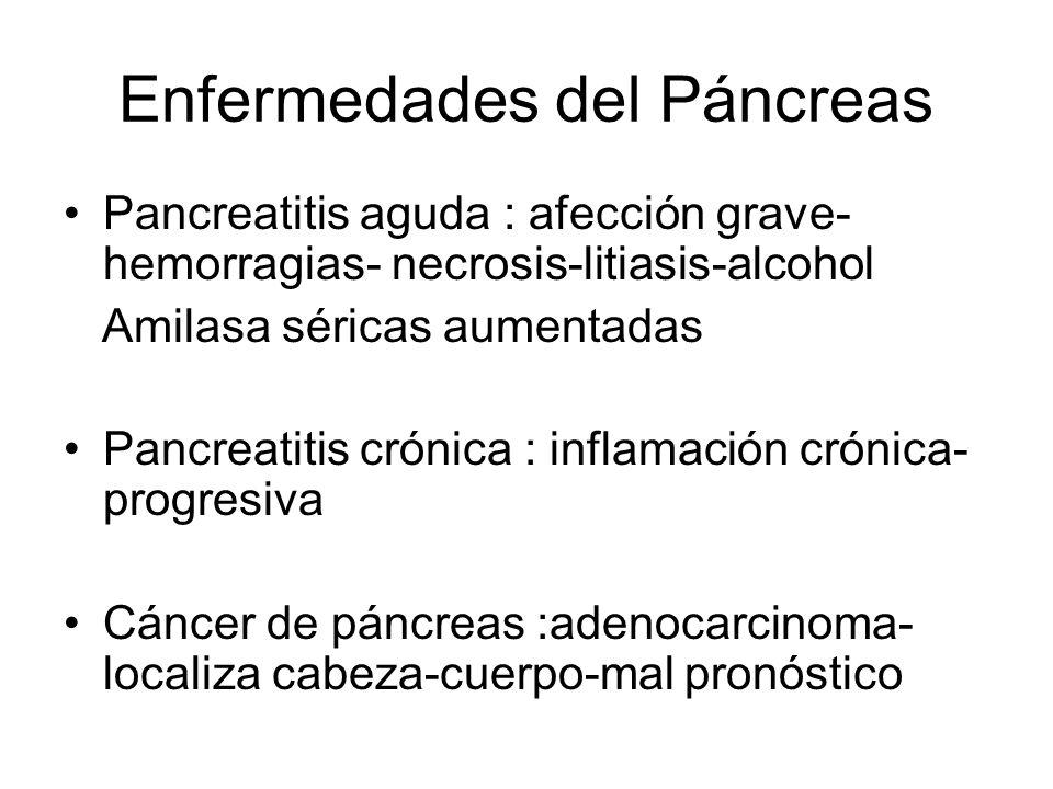 Enfermedades del Páncreas Pancreatitis aguda : afección grave- hemorragias- necrosis-litiasis-alcohol Amilasa séricas aumentadas Pancreatitis crónica