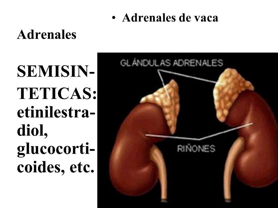 Adrenales Adrenales de vaca SEMISIN- TETICAS: etinilestra- diol, glucocorti- coides, etc.
