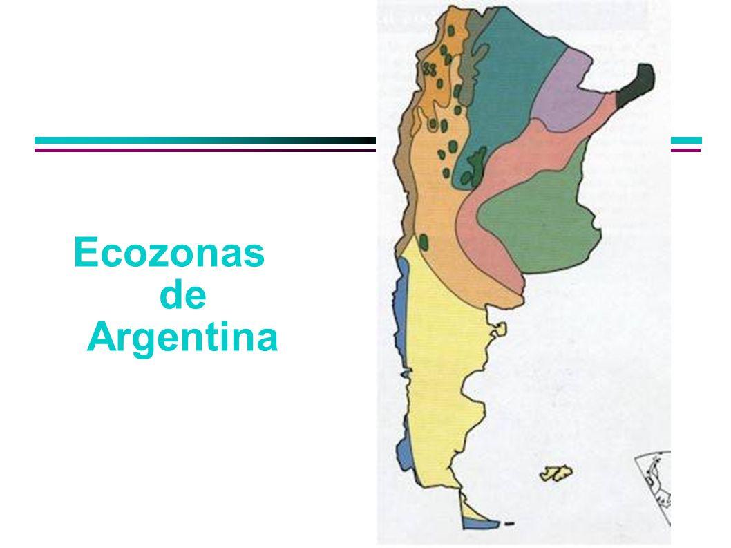Ecozonas de Argentina