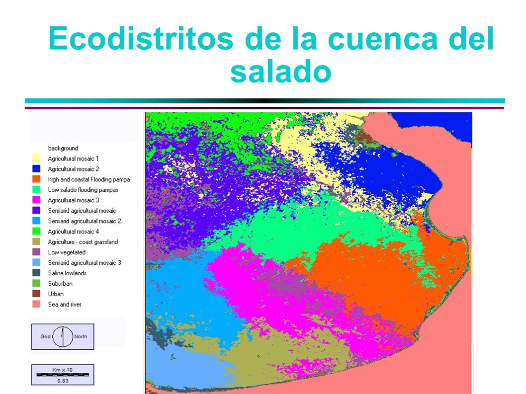 Ecodistritos de la cuenca del salado
