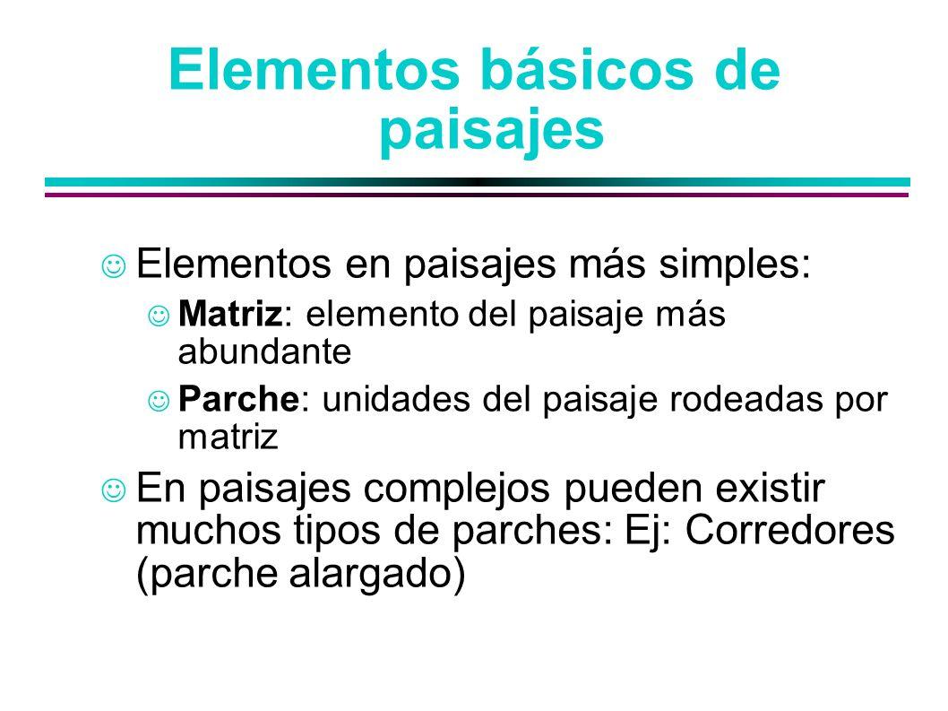 Elementos básicos de paisajes Elementos en paisajes más simples: Matriz: elemento del paisaje más abundante Parche: unidades del paisaje rodeadas por