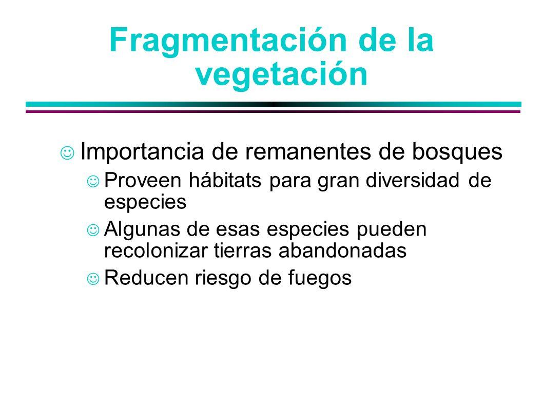 Fragmentación de la vegetación Importancia de remanentes de bosques Proveen hábitats para gran diversidad de especies Algunas de esas especies pueden