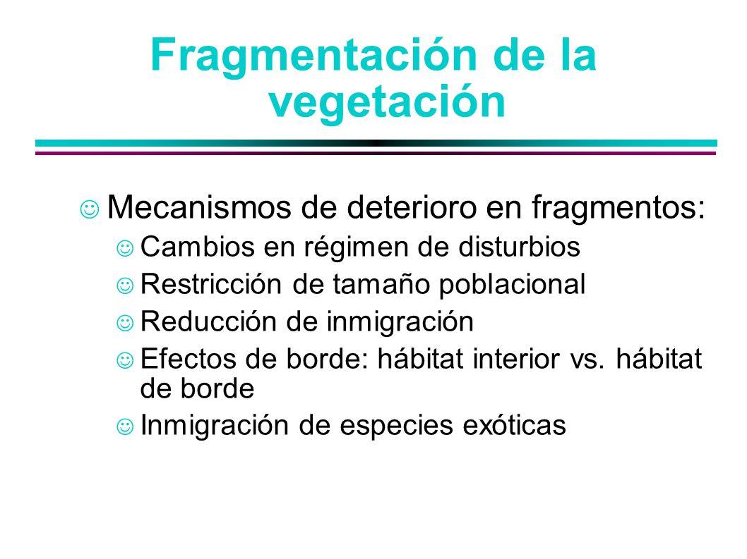 Fragmentación de la vegetación Mecanismos de deterioro en fragmentos: Cambios en régimen de disturbios Restricción de tamaño poblacional Reducción de