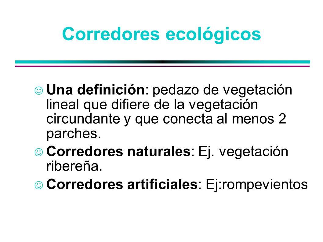 Corredores ecológicos Una definición: pedazo de vegetación lineal que difiere de la vegetación circundante y que conecta al menos 2 parches. Corredore