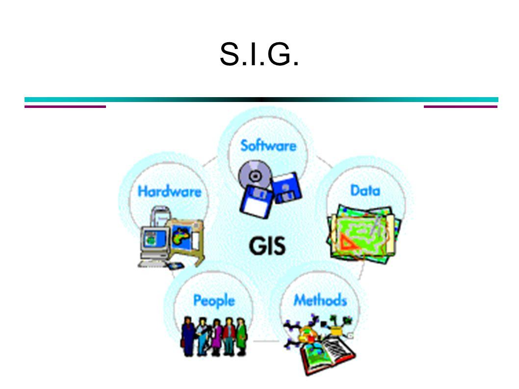 S.I.G.