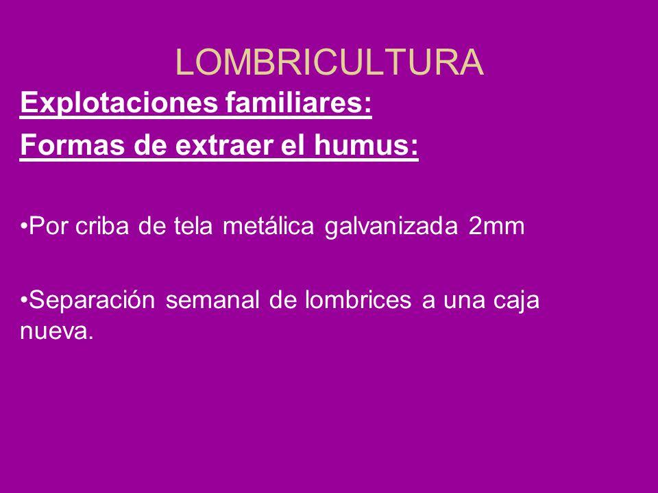 LOMBRICULTURA Explotaciones familiares: Formas de extraer el humus: Por criba de tela metálica galvanizada 2mm Separación semanal de lombrices a una c