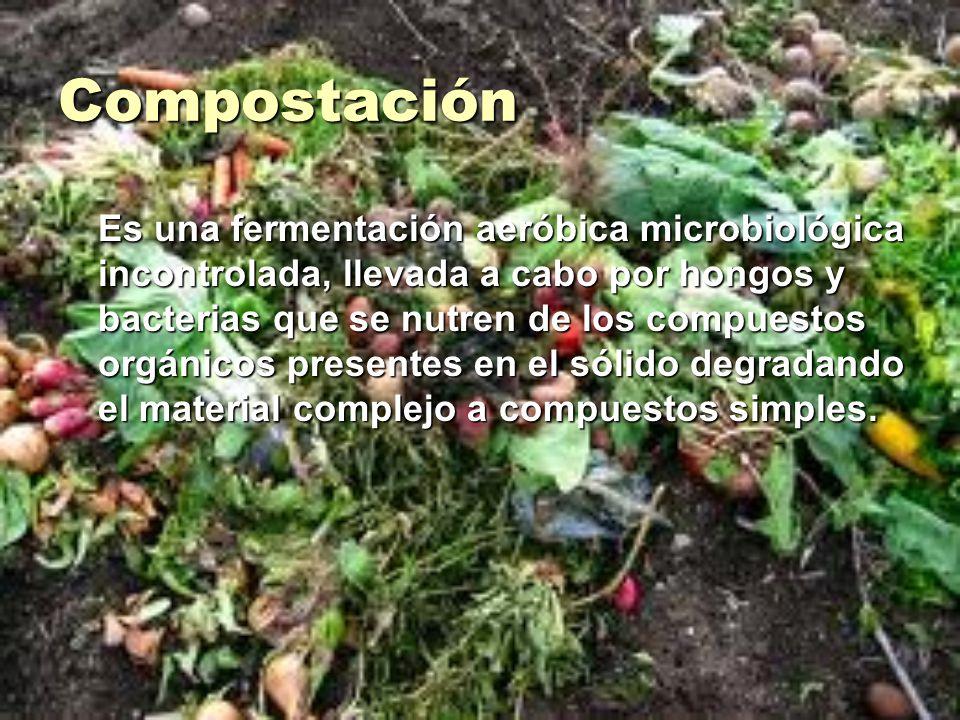 Compostación Es una fermentación aeróbica microbiológica incontrolada, llevada a cabo por hongos y bacterias que se nutren de los compuestos orgánicos