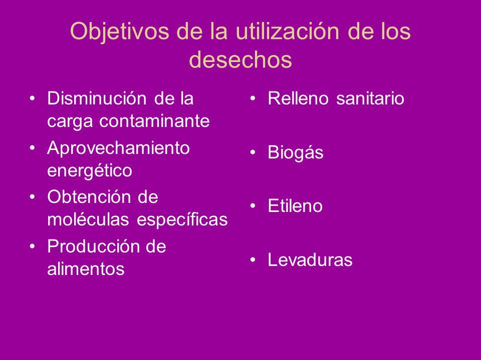 Objetivos de la utilización de los desechos Disminución de la carga contaminante Aprovechamiento energético Obtención de moléculas específicas Producc