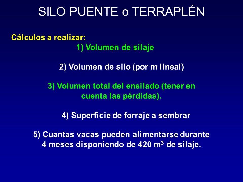 SILO PUENTE o TERRAPLÉN Cálculos a realizar: 1) Volumen de silaje 2) Volumen de silo (por m lineal) 3) Volumen total del ensilado (tener en cuenta las