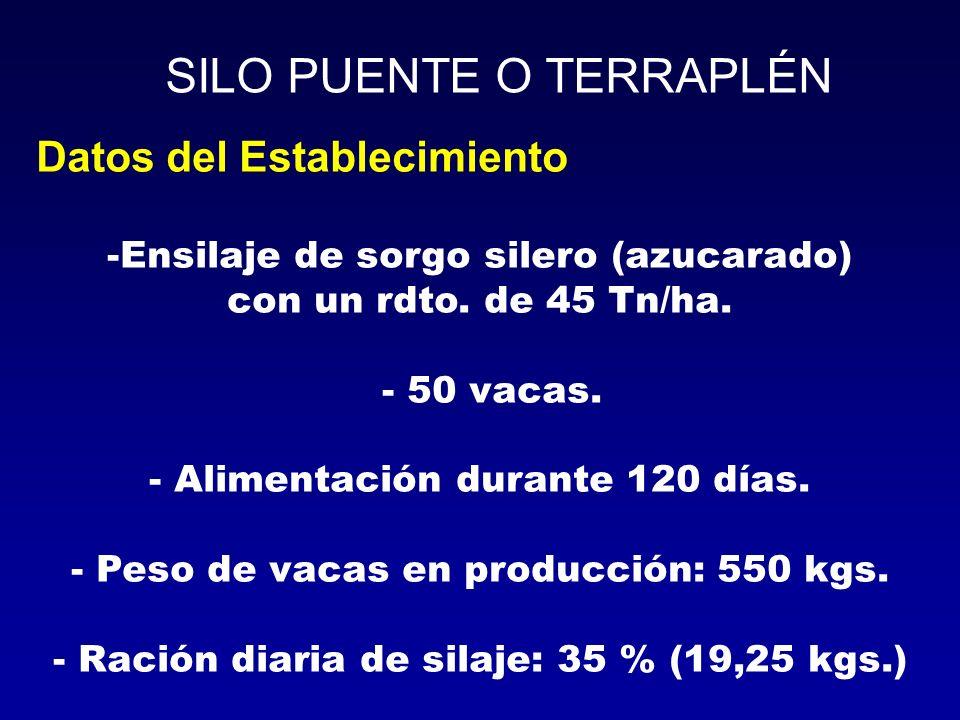 Datos del Establecimiento -Ensilaje de sorgo silero (azucarado) con un rdto. de 45 Tn/ha. - 50 vacas. - Alimentación durante 120 días. - Peso de vacas