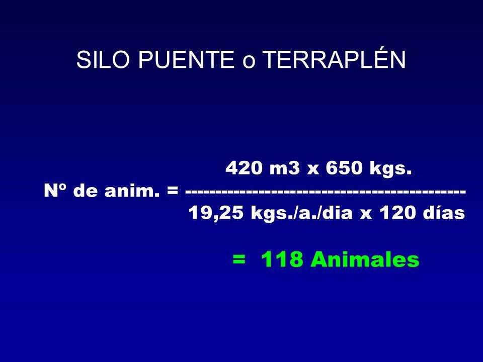 SILO PUENTE o TERRAPLÉN 420 m3 x 650 kgs. Nº de anim. = --------------------------------------------- 19,25 kgs./a./dia x 120 días = 118 Animales