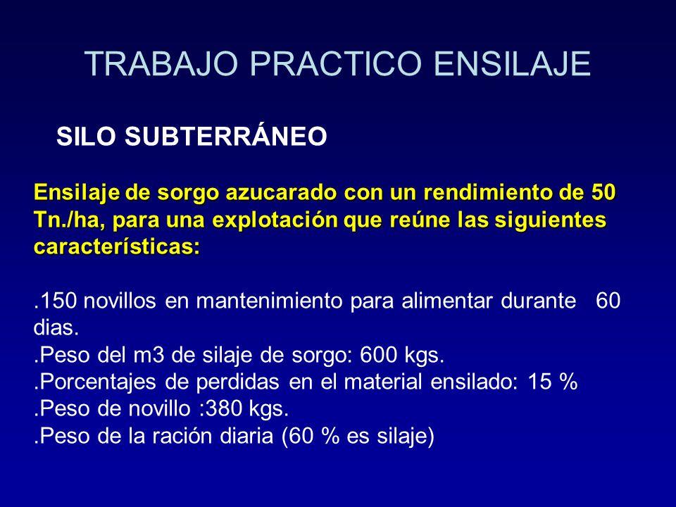 TRABAJO PRACTICO ENSILAJE SILO SUBTERRÁNEO Ensilaje de sorgo azucarado con un rendimiento de 50 Tn./ha, para una explotación que reúne las siguientes