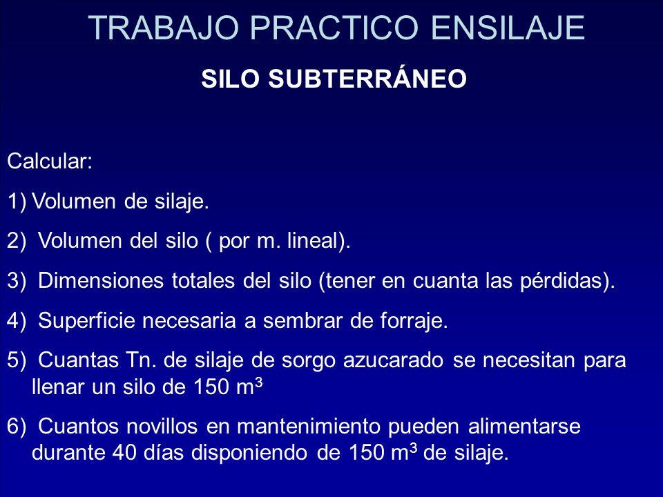 TRABAJO PRACTICO ENSILAJE SILO SUBTERRÁNEO Calcular: 1)Volumen de silaje. 2) Volumen del silo ( por m. lineal). 3) Dimensiones totales del silo (tener
