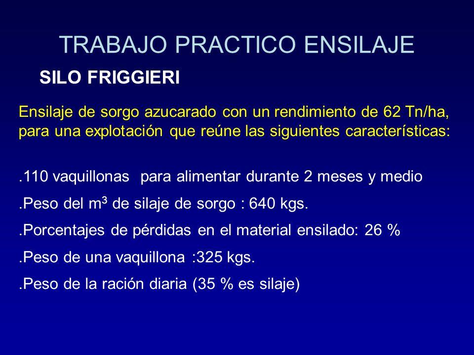 TRABAJO PRACTICO ENSILAJE SILO FRIGGIERI Ensilaje de sorgo azucarado con un rendimiento de 62 Tn/ha, para una explotación que reúne las siguientes car