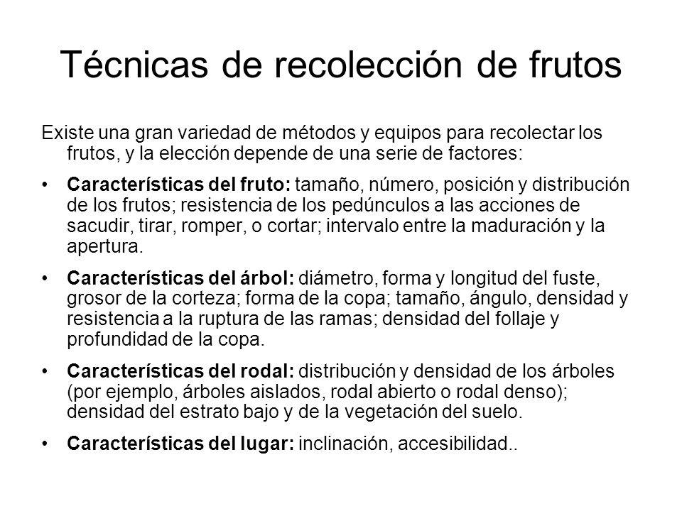 Técnicas de recolección de frutos Existe una gran variedad de métodos y equipos para recolectar los frutos, y la elección depende de una serie de fact