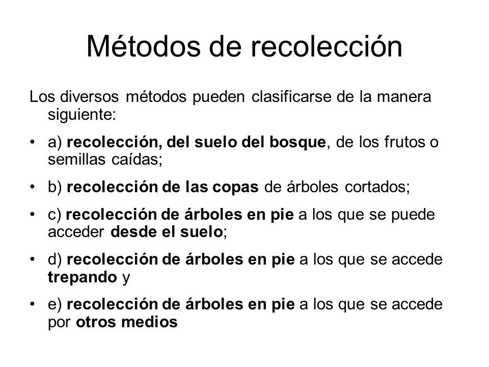 Los diversos métodos pueden clasificarse de la manera siguiente: a) recolección, del suelo del bosque, de los frutos o semillas caídas; b) recolección