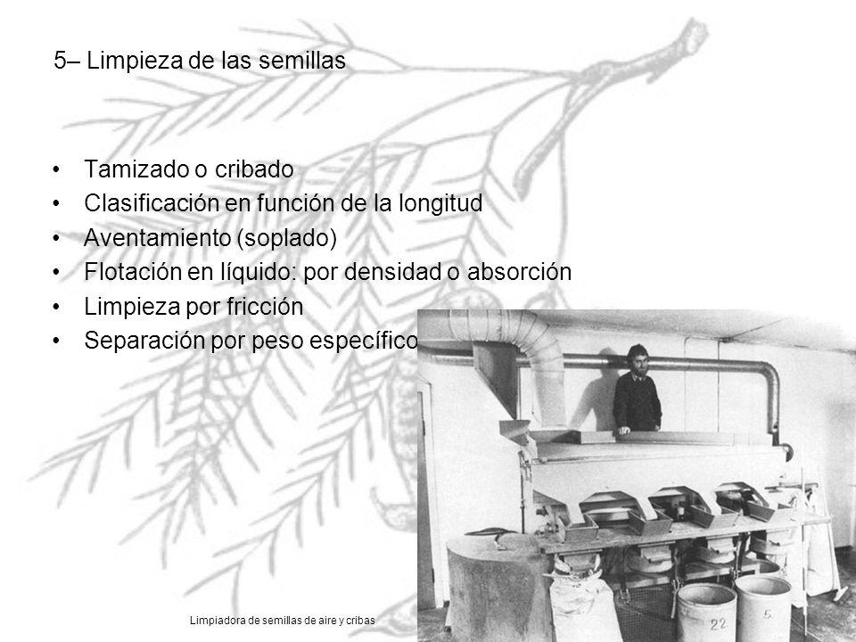5– Limpieza de las semillas Tamizado o cribado Clasificación en función de la longitud Aventamiento (soplado) Flotación en líquido: por densidad o abs