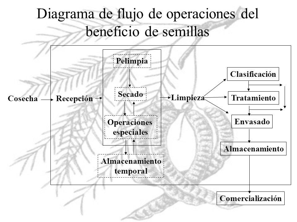 Diagrama de flujo de operaciones del beneficio de semillas Cosecha Recepción Pelimpia Secado Operaciones especiales Almacenamiento temporal Limpieza C