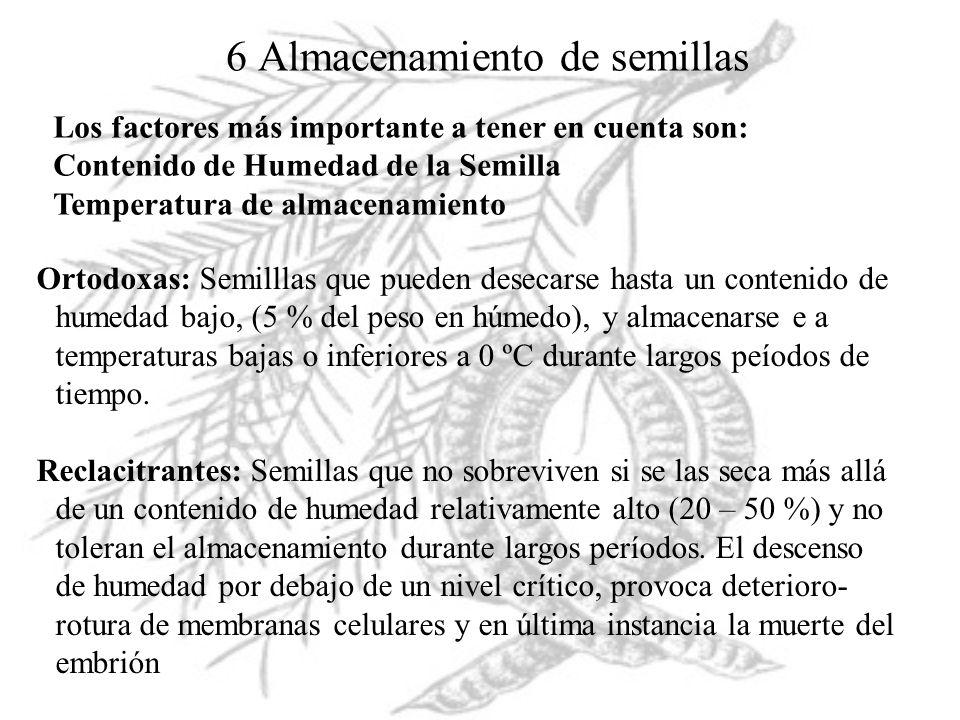 6 Almacenamiento de semillas Los factores más importante a tener en cuenta son: Contenido de Humedad de la Semilla Temperatura de almacenamiento Ortod