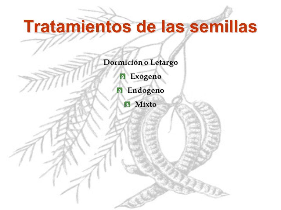 Dormición o Letargo ExógenoEndógenoMixto Tratamientos de las semillas